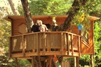 treehouse on the San Francisco pennisula