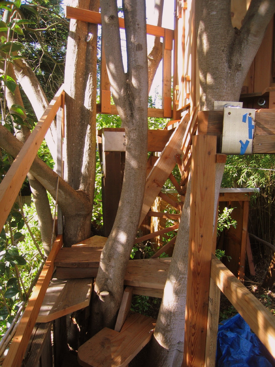 Tree yurt treehouse, view 10