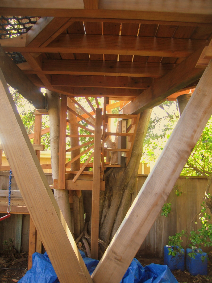 Tree yurt treehouse, view 12