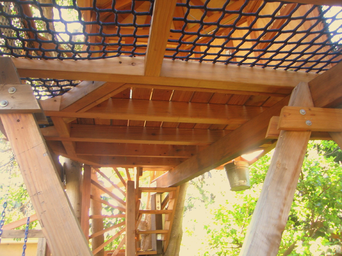 View of the floor from below, note the gorgeous redwood floor beams and planks, hidden fasteners, and the walkable netting