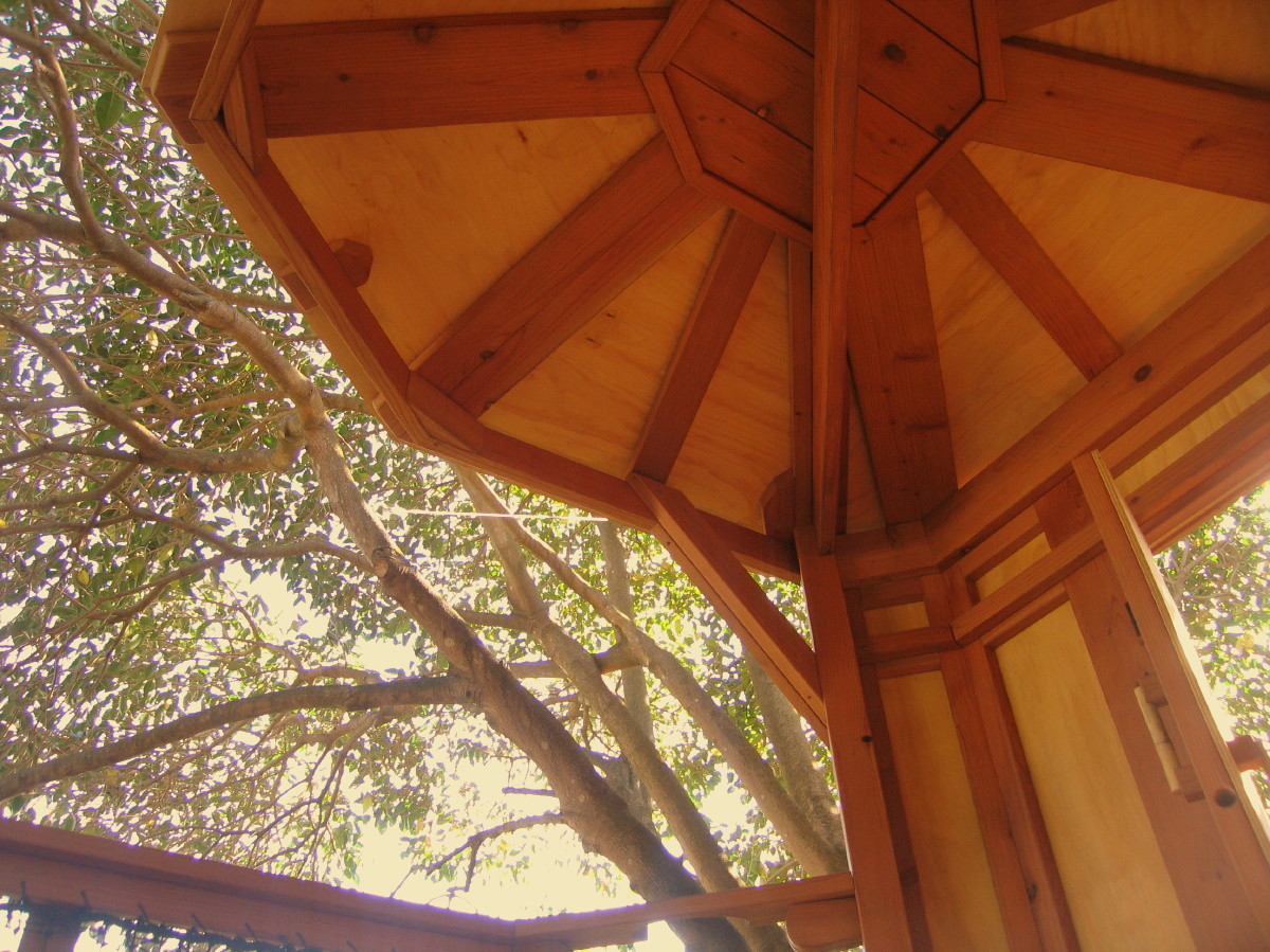 Redwood Treehouse ceiling detail, view 3