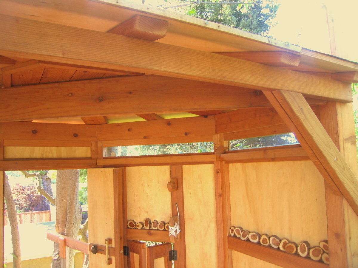 Redwood ceiling and roof framing of Kate's Tree Yurt