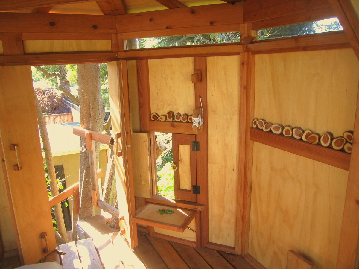 Kate's TreeYurt treehouse, with doors open and bucket shelf up